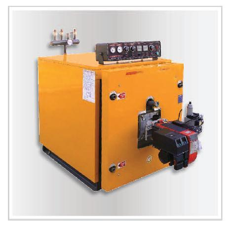 Oil-gas boilers - OIl - Gas High Efficiency Steel boilers ENERSAVE ...